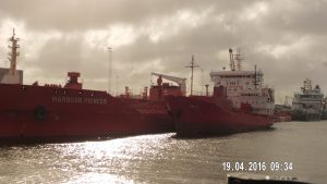 habour pioneer (2)